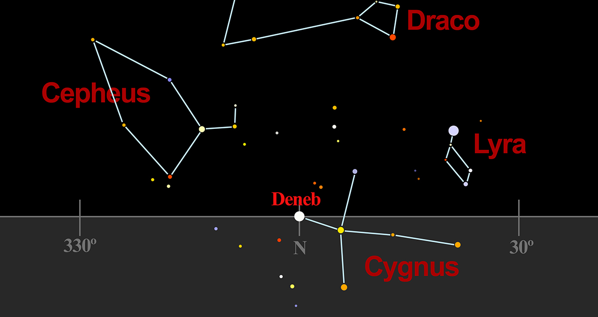 Cygnus due north