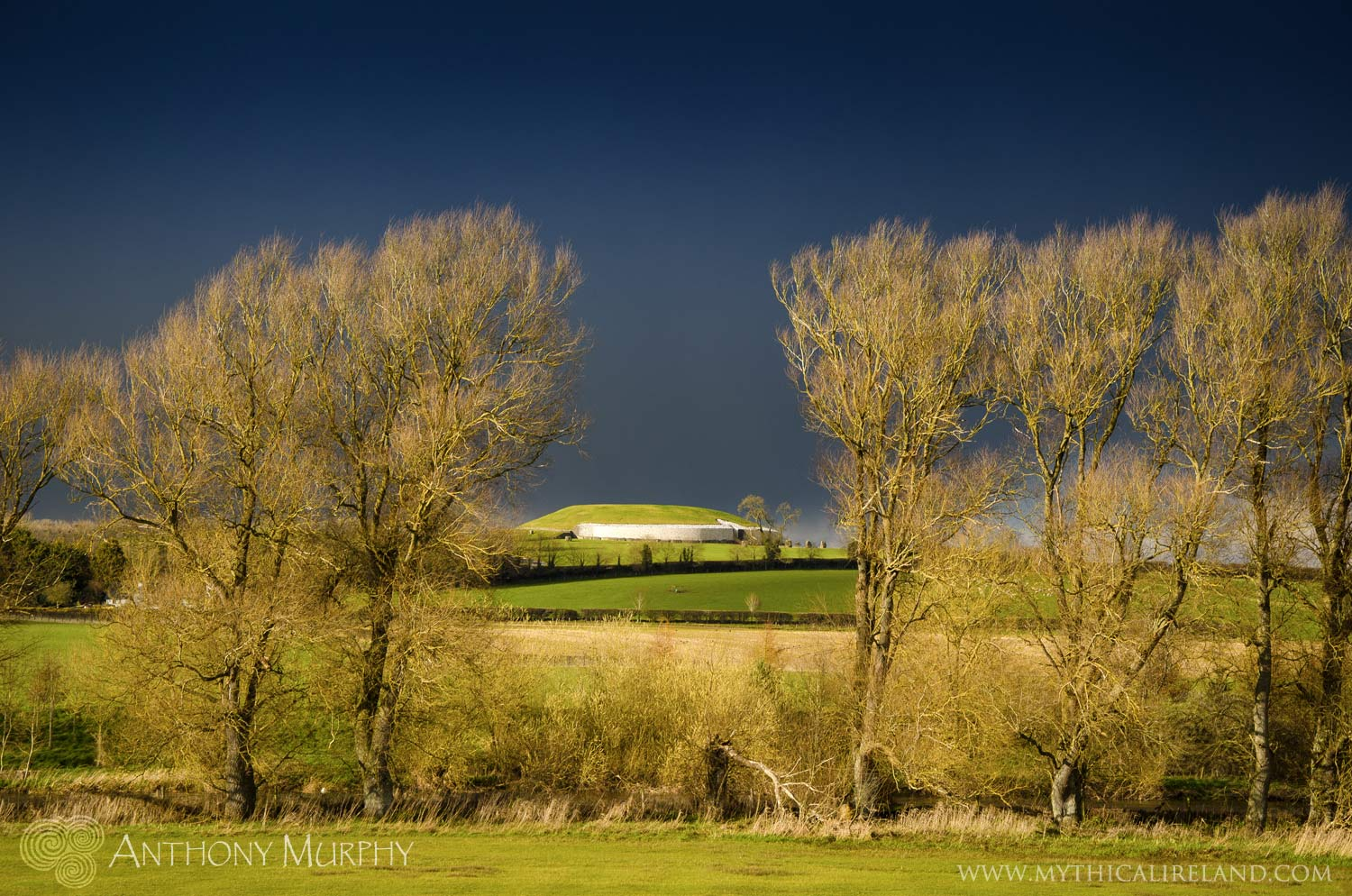 A View of Newgrange