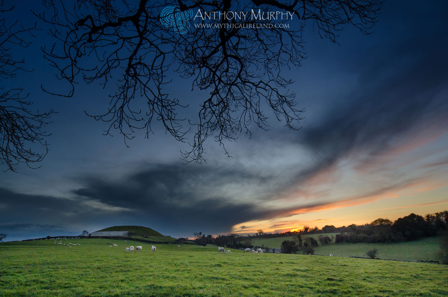 A view of Newgrange in the dusk