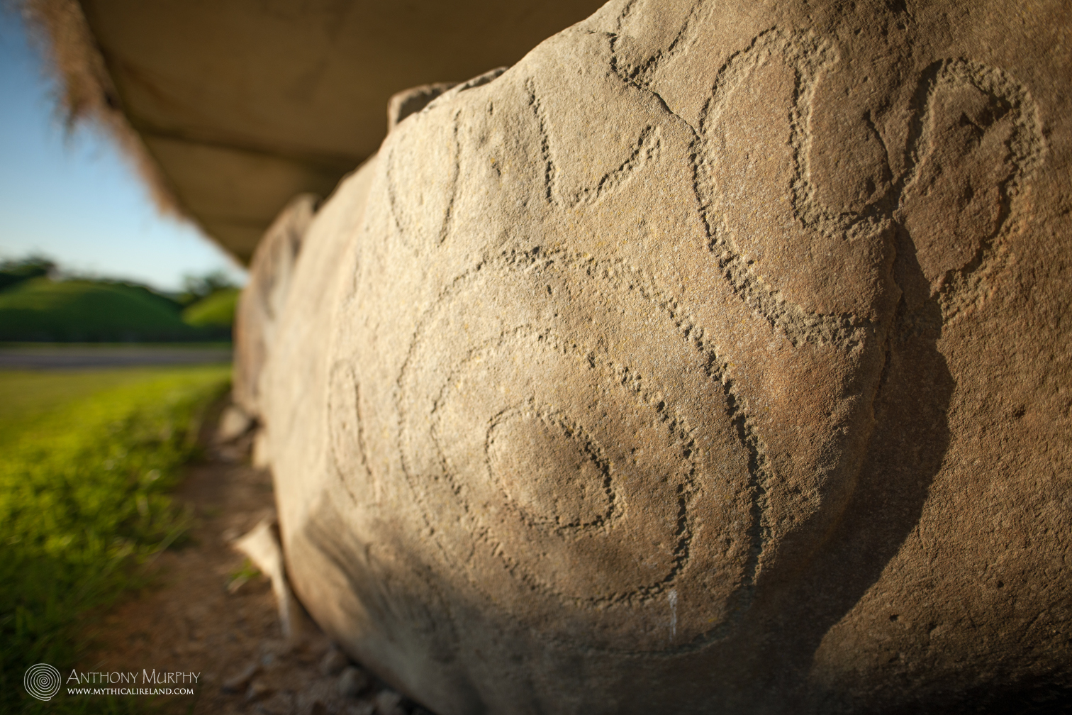 Knowth Kerb Stone 79 (In detail)